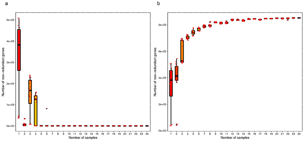 Novogene Metagenomic Sequencing Core-pan Gene Rarefaction Curve