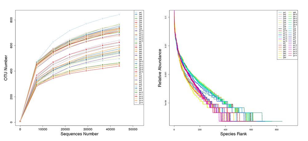 Novogene Amplicon Rarefaction & Rank Abundance Curves by Individual Sample