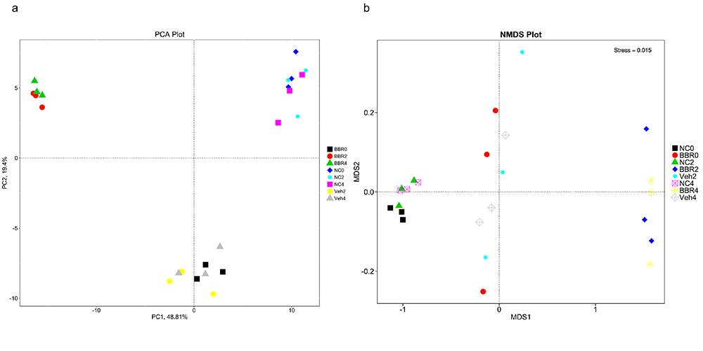 Novogene Metagenomic PCA & NMDS Analysis Results based on relative abundance of gene functions